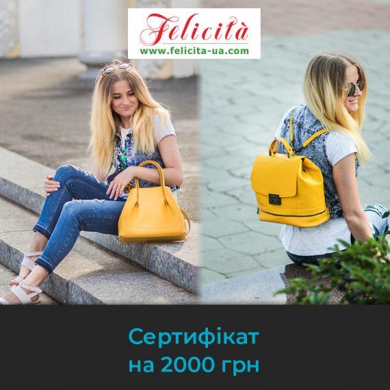 сумки_фелічіта_2000грн_01